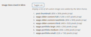 Theme Option Image Sizes