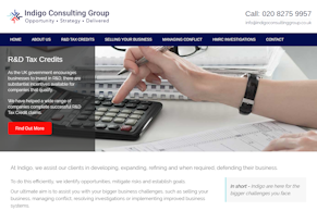 Indigo Consulting Group